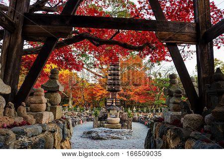 Adashino Nenbutsuji In Autumn, Arashiyama,