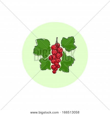 Redcurrant, Round Icon Colorful Redcurrant, Fruit  Berry Icon