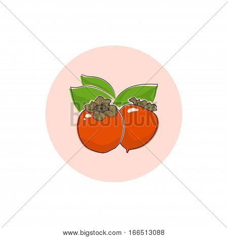 Persimmon, Round Icon Colorful Persimmon ,Fruit Icon