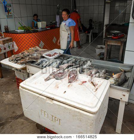 Fishmonger, Barreirinhas, Brazil