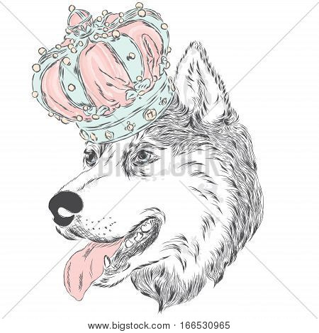 Husky in the crown . Vector illustration. Cute dog.