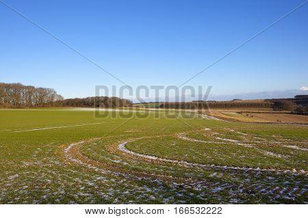 Frosty Tyre Tracks
