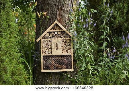 Insect house in the garden, protection for insects, insect hotel.