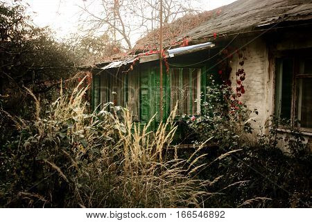 Old Rustic House With Porch In Sunny Summer Garden