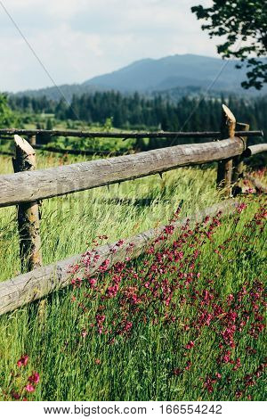Amazing Beautiful View Of Mountains Hills With Wooden Fence And Flowers On Background Of Blue Sky An