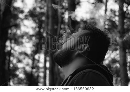 Bearded man in the woods Smoking a cigar, brooding