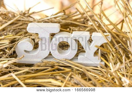 Joy text decoration nestled on a bed of straw with a warm background glow