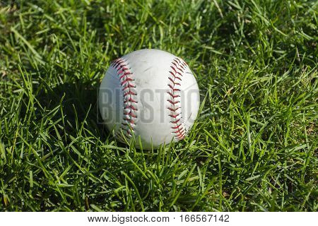 Closeup of Scuffed baseball on grassy background