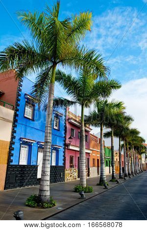 Tenerife. Colourful houses and palm trees on street in Puerto de la Cruz town Tenerife Canary Islands Spain