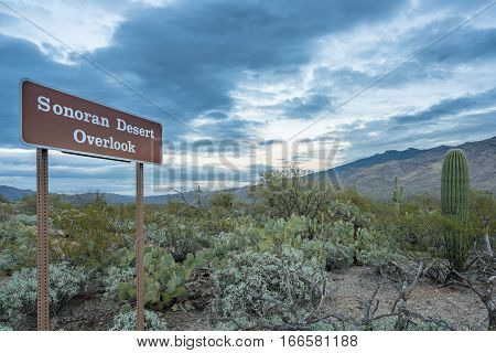 Sonoran Desert Overlook sign in Saguaro National Park East near Tucson Arizona