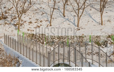 Winter landscape of a foot bridge in the forest with the ground covered with snow