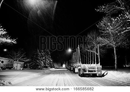Two eighteen wheel trucks with attached empty log trailers parked along the edge of a street under street lights and row of trees at night in black and white winter landscape