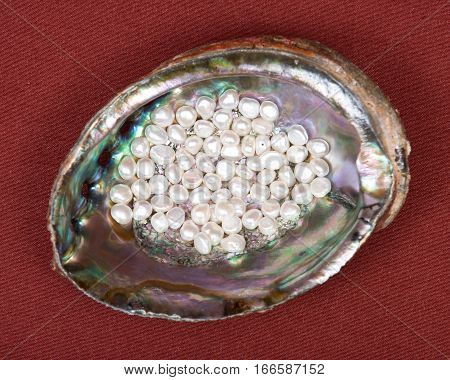Beads of natural white freshwater pearl in bright polished rainbow abalone shell on red fabric background
