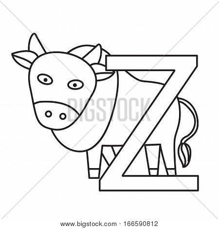 Illustrator of z zebu for education isolated