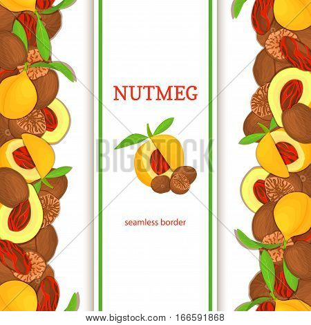 Nutmeg verticall seamless border. Vector illustration with composition of a delicious pattern nutmeg fruit in the shell whole shelled leaves appetizing looking for packaging design of healthy food