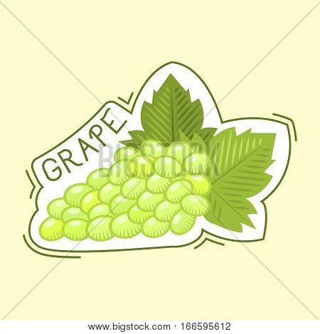Bunche of grape logo grow viticulture vector illustration. Green nature food isolated juicy berry badge. Winery harvest natural purple agriculture nutrition.