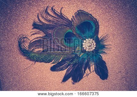 Peacock Feather Hair Clip Filtered