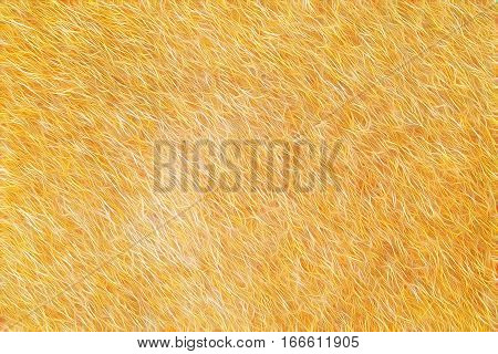 Fur Abstract Background It Looks Like Fur Texture.