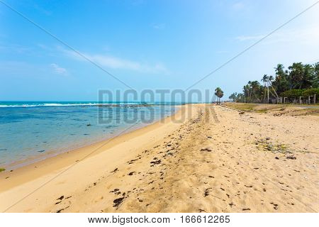 Jaffna Point Pedro Sand Beach Litter H