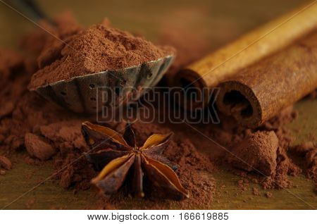 cocoa powder with cinnamon quill and star aniseed - close up