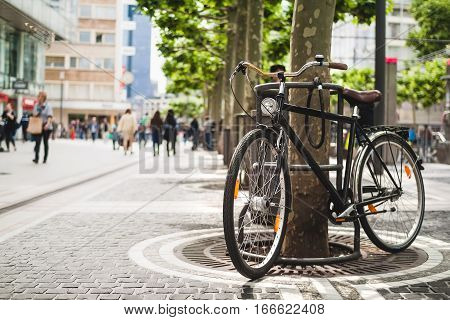 Bike standing near a platan tree in Frankfurt Germany. Summer in Europe