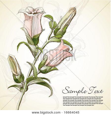 Illustration Sketch Flower