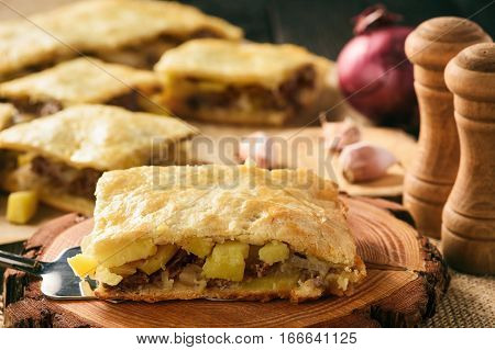 Savory pie with beef, onion and potatoes.