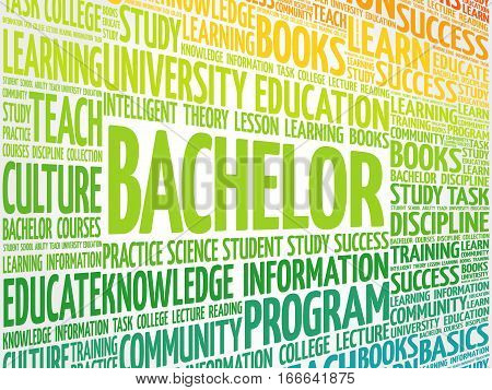 Bachelor word cloud collage, education concept background