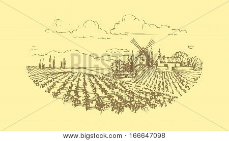 Vector illustration. Vineyard landscape with a mill. Wine label design.