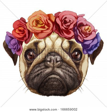 Portrait of Pug Dog with floral head wreath. Hand-drawn illustration, digitally colored.