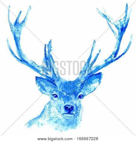 Deer. Wild animal image. Watercolor hand drawn illustration.