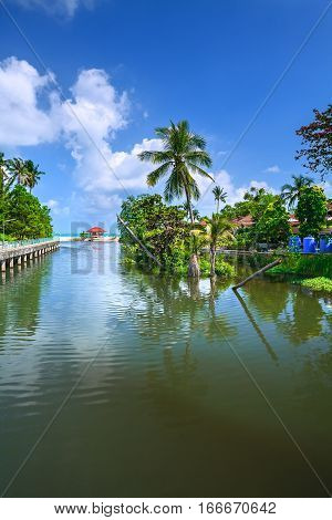 Pond with palm trees and lush greenery by the sea under sky with clouds.