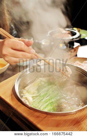 Shabu Shabu, Japanese Traditional Hot Pot, Fondue