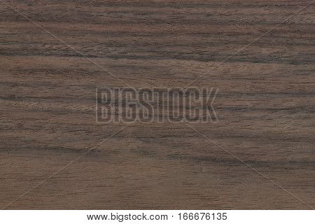 Rosewood- Indian (Dalbergia latifola) East Indies. Showing the wood grain and pattern typical of this tree.