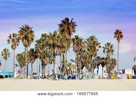 California Beach with palm trees. Venice beach