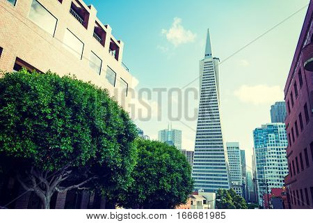 San Francisco, California - October 31 2016: Transamerica Pyramid in downtown San Francisco