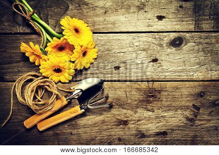 Gardening tools flowers rope brushes and gardening gloves on vintage wooden table. Spring summer or garden concept background with free text space. Toning.