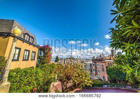 blue sky over San Francisco bay California