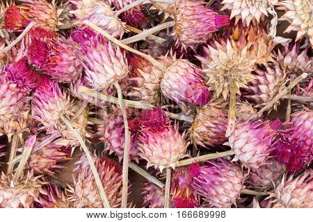 dried pink ar cardoni artichokes in wooden box