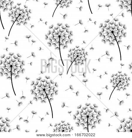 Beautiful nature background seamless pattern white and black with dandelion fluff. Floral seamless pattern with summer or spring flowers. Stylish trendy wallpaper. Vector illustration