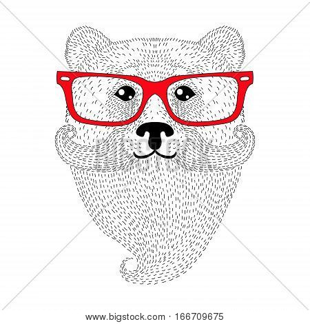 Cute bear portrait with french mustache, beard, glasses. Hand drawn wild anthropomorphic animal face, vector illustration for t-shirt print, kids greeting card, invitation for gentleman party.