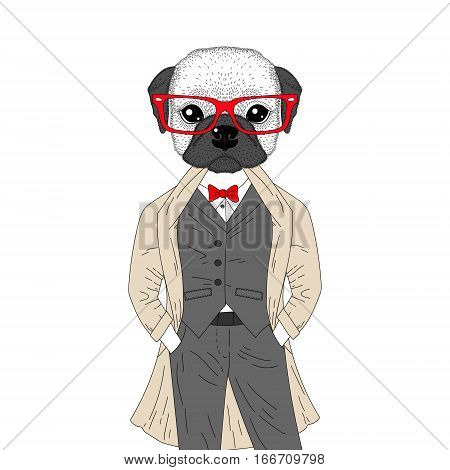 Vector brutal french bulldog in elegant classic suit with coat. Hand drawn anthropomorphic dog with glasses, illustration for t-shirt print, kids greeting card, invitation for pet party.