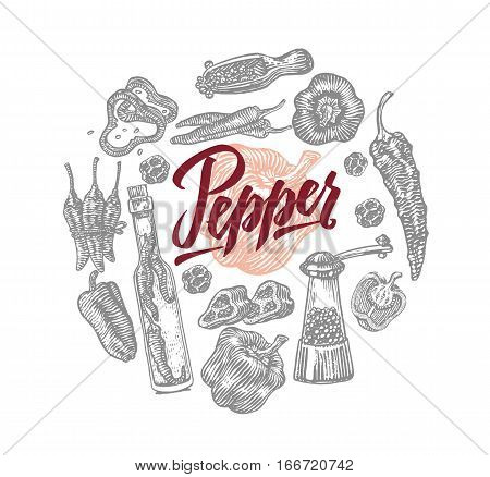 Sketch food round composition with chili pepper elements of different sorts on white background isolated vector illustration