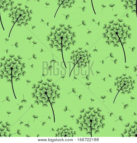 Beautiful nature green background seamless pattern with black dandelion fluff. Floral seamless pattern with summer or spring flowers. Stylish trendy wallpaper. Vector illustration