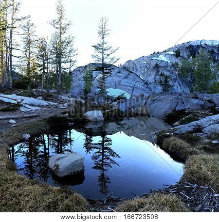 Reflections of larch trees in a small tarn. The Enchantments basin. Leavenworth. Seattle. Washington. United States.