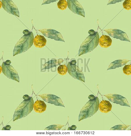 Clementines. Citrus on green background. Seamless watercolor pattern. Could be used for textile or in design