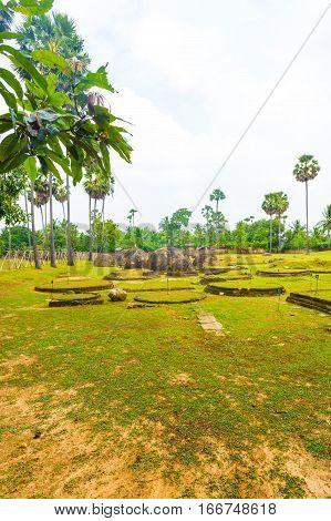 Jaffna Kandarodai Archeological Site Stupas H