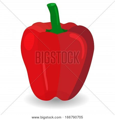 Red Sweet Bulgarian Bell Pepper. Paprika Isolated on White Background. Pepper vegetable icon.
