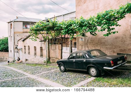 Tbilisi, Georgia - May 20, 2016: The Rear View Of Parked Black Volga GAZ, Retro Rarity Car Near The Private Residential House Under Green Vine Canopy On Cobbled Downhill Street In Spring, Somber Sky.
