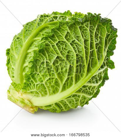 Savoy cabbage isolated on white background. Home grown vegetable